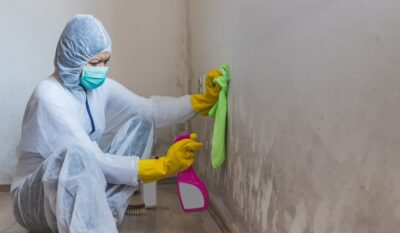 5 Signs you should Call a Mold Removal Specialist